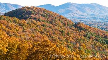 Blue Ridge Parkway Fall Colors, Asheville, North Carolina