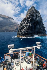 Roca Elephante, Guadalupe Island (Isla Guadalupe)