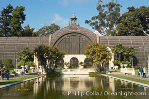 The Botanical Building in Balboa Park, San Diego.  The Botanical Building, at 250 feet long by 75 feet wide and 60 feet tall, was the largest wood lath structure in the world when it was built in 1915 for the Panama-California Exposition. The Botanical Building, located on the Prado, west of the Museum of Art, contains about 2,100 permanent tropical plants along with changing seasonal flowers. The Lily Pond, just south of the Botanical Building, is an eloquent example of the use of reflecting pools to enhance architecture. The 193 by 43 foot pond and smaller companion pool were originally referred to as Las Lagunas de las Flores (The Lakes of the Flowers) and were designed as aquatic gardens. The pools contain exotic water lilies and lotus which bloom spring through fall.  Balboa Park, San Diego. Balboa Park, San Diego, California, USA, natural history stock photograph, photo id 14576