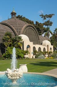 The Botanical Building in Balboa Park, San Diego.  The Botanical Building, at 250 feet long by 75 feet wide and 60 feet tall, was the largest wood lath structure in the world when it was built in 1915 for the Panama-California Exposition. The Botanical Building, located on the Prado, west of the Museum of Art, contains about 2,100 permanent tropical plants along with changing seasonal flowers. The Lily Pond, just south of the Botanical Building, is an eloquent example of the use of reflecting pools to enhance architecture. The 193 by 43 foot pond and smaller companion pool were originally referred to as Las Lagunas de las Flores (The Lakes of the Flowers) and were designed as aquatic gardens. The pools contain exotic water lilies and lotus which bloom spring through fall.  Balboa Park, San Diego. Balboa Park, San Diego, California, USA, natural history stock photograph, photo id 14580