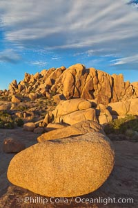 Boulders and sunset in Joshua Tree National Park.  The warm sunlight gently lights unusual boulder formations at Jumbo Rocks in Joshua Tree National Park, California. Joshua Tree National Park, California, USA, natural history stock photograph, photo id 26730