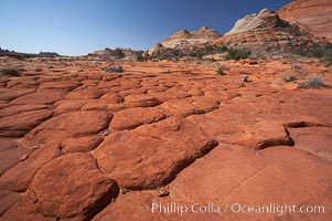 Geometric joints and cracks form in eroding sandstone, North Coyote Buttes, Paria Canyon-Vermilion Cliffs Wilderness, Arizona