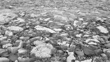 Brash ice, Weddell Sea, Death Valley National Park, California