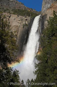 Bridalveil Falls with a rainbow forming in its spray, dropping 620 into Yosemite Valley, displaying peak water flow in spring months from deep snowpack and warm weather melt.  Yosemite Valley, Yosemite National Park, California