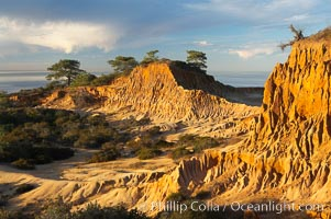 Broken Hill with the Pacific Ocean in the distance.  Broken Hill is an ancient, compacted sand dune that was uplifted to its present location and is now eroding. Torrey Pines State Reserve, San Diego, California, USA, natural history stock photograph, photo id 14762