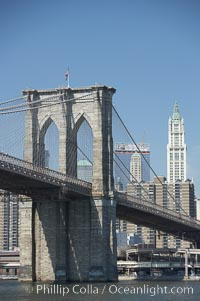 Lower Manhattan and Brooklyn Bridge, viewed from the East River. Manhattan, New York City, New York, USA, natural history stock photograph, photo id 11117