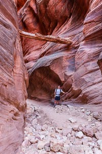 Suspended log in Buckskin Gulch.  A hiker considers a heavy log stuck between the narrow walls of Buckskin Gulch, placed there by a flash flood some time in the past.  Buckskin Gulch is the world's longest accessible slot canyon, forged by centuries of erosion through sandstone.  Flash flooding is a serious danger in the narrows where there is no escape, Paria Canyon-Vermilion Cliffs Wilderness, Arizona