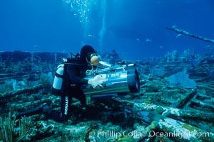 Cameraman. Bahamas, natural history stock photograph, photo id 00696