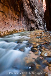 The Virgin River flows through the Zion Narrows, with tall sandstone walls towering hundreds of feet above, Virgin River Narrows, Zion National Park, Utah