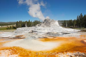 Castle Geyser (during steam phase, not eruption) with the colorful bacteria mats of Tortoise Shell Spring in the foreground. While Castle Geyser has a 12 foot sinter cone that took 5,000 to 15,000 years to form, it is in fact situated atop geyserite terraces that themselves may have taken 200,000 years to form, making it likely the oldest active geyser in the park. Upper Geyser Basin.,  Copyright Phillip Colla, image #13427, all rights reserved worldwide.