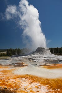 Castle Geyser erupts with the colorful bacteria mats of Tortoise Shell Spring in the foreground.  Castle Geyser reaches 60 to 90 feet in height and lasts 20 minutes.  While Castle Geyser has a 12 foot sinter cone that took 5,000 to 15,000 years to form, it is in fact situated atop geyserite terraces that themselves may have taken 200,000 years to form, making it likely the oldest active geyser in the park. Upper Geyser Basin.,  Copyright Phillip Colla, image #13437, all rights reserved worldwide.