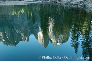 Cathedral Rocks reflected in the Merced River, Yosemite Valley, Yosemite National Park, California