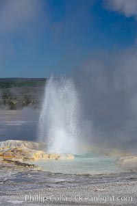 Clepsydra Geyser erupts almost continuously, reaching heights of  feet.  Its name is Greek for water clock, since at one time it erupted very regularly with a three minute interval.  Lower Geyser Basin, Yellowstone National Park, Wyoming