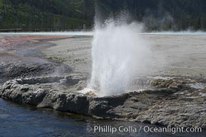 Cliff Geyser, Black Sand Basin, Yellowstone National Park, Wyoming