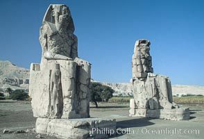 Colossi of Memnon. Luxor, Egypt, natural history stock photograph, photo id 02587