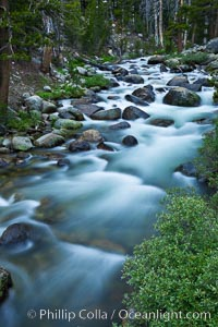 Dana Fork of the Tuolumne River, near Tioga Pass. Yosemite National Park, California, USA, natural history stock photograph, photo id 26976