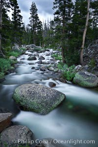 Dana Fork of the Tuolumne River, near Tioga Pass, Yosemite National Park, California
