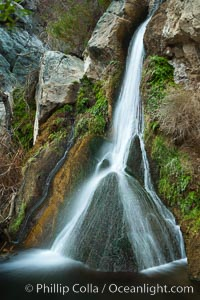 Darwin Falls in Death Valley, near the settlement of Panamint Springs.  The falls are fed by a perennial stream that flows through a narrow canyon of plutonic rock, and drop of total of 80&#39; (24m) in two sections, Death Valley National Park, California