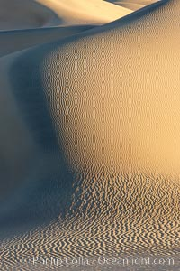 Sand Dunes, California.  Near Stovepipe Wells lies a region of sand dunes, some of them hundreds of feet tall. Stovepipe Wells, Death Valley National Park, California, USA, natural history stock photograph, photo id 15588