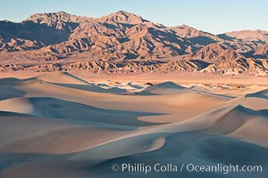Sand Dunes, California.  Near Stovepipe Wells lies a region of sand dunes, some of them hundreds of feet tall. Stovepipe Wells, Death Valley National Park, California, USA, natural history stock photograph, photo id 15591