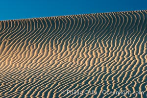 Ripples in sand dunes at sunset, California.  Winds reshape the dunes each day.  Early morning walks among the dunes can yield a look at sidewinder and kangaroo rats tracks the nocturnal desert animals leave behind.,  Copyright Phillip Colla, image #15607, all rights reserved worldwide.