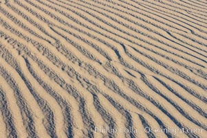 Image 15630, Ripples in sand dunes at sunset, California.  Winds reshape the dunes each day.  Early morning walks among the dunes can yield a look at sidewinder and kangaroo rats tracks the nocturnal desert animals leave behind. Stovepipe Wells, Death Valley National Park, California, USA