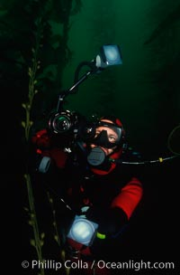 Diver and camera, Point Loma, San Diego, California