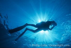 Diver and sunburst. Guadalupe Island (Isla Guadalupe), Baja California, Mexico, natural history stock photograph, photo id 04619