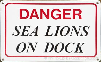 Dock sign warning visitors of sea lions, Astoria, Oregon