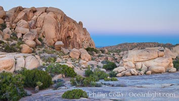 Sunset and Earth Shadow, Jumbo Rocks, Joshua Tree National Park. Joshua Tree National Park, California, USA, natural history stock photograph, photo id 26723