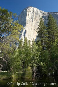 El Capitan rises above the Merced River, Yosemite Valley. El Capitan, Yosemite National Park, California, USA