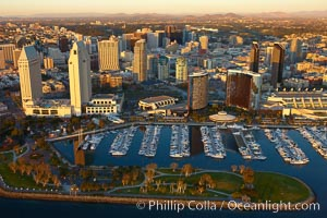 Embarcadero Marina Park, with the Grand Hyatt (left) and Marriott (right) hotels rising above the yacht basin, San Diego, California