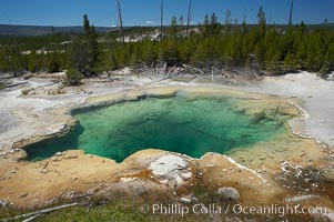 Emerald Spring, with its sulfur-lined sides, displays a deep green color, the result of its clear water (which would otherwise display as blue) and the deep yellow coloration of its sulfur lining, Norris Geyser Basin, Yellowstone National Park, Wyoming