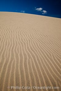 "Eureka Dunes.  The Eureka Valley Sand Dunes are California's tallest sand dunes, and one of the tallest in the United States.  Rising 680' above the floor of the Eureka Valley, the Eureka sand dunes are home to several endangered species, as well as ""singing sand"" that makes strange sounds when it shifts.  Located in the remote northern portion of Death Valley National Park, the Eureka Dunes see very few visitors"