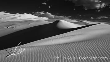 "Eureka Sand Dunes, infrared black and white.  The Eureka Dunes are California's tallest sand dunes, and one of the tallest in the United States.  Rising 680' above the floor of the Eureka Valley, the Eureka sand dunes are home to several endangered species, as well as ""singing sand"" that makes strange sounds when it shifts, Death Valley National Park"