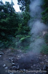 Fumeroles / steam vents / hot springs, Sao Miguel Island