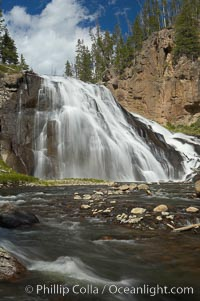 Gibbon Falls drops 80 feet through a deep canyon formed by the Gibbon River. Although visible from the road above, the best vantage point for viewing the falls is by hiking up the river itself, Yellowstone National Park, Wyoming