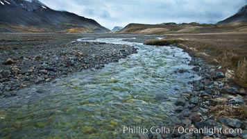Glacial melt waters, runoff, flows across an alluvial flood plain between mountains, on its way to Stromness Bay. Stromness Harbour, South Georgia Island, natural history stock photograph, photo id 24587