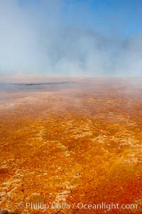 Grand Prismatic Spring displays brilliant colors along its edges, created by species of thermophilac (heat-loving) bacteria that thrive in narrow temperature ranges.  The outer orange and red regions are the coolest water in the spring, where the overflow runs off.  Midway Geyser Basin, Yellowstone National Park, Wyoming