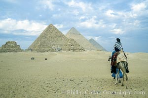 Great pyramids, visitor rides a camel across the sands to see the pyramids, Egypt.  Pyramids of Queens, Pyramid of Menkaure, Pyramid of Khafre, Pyramid of Khufu (left to right, front to back), Giza