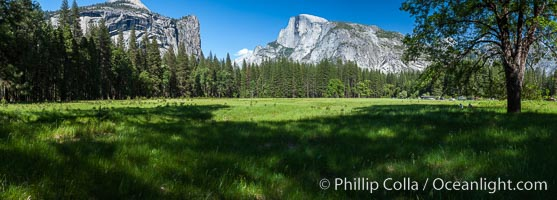 Half Dome (center) and Washington Column (left), late afternoon in spring, viewed from Ahwahnee Meadow. Half Dome, Yosemite National Park, California, USA, natural history stock photograph, photo id 07152