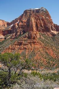 Kolob Canyon. Zion National Park, Utah, USA, natural history stock photograph, photo id 12482