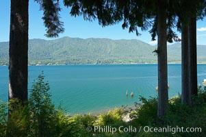Lake Quinalt, Olympic National Park, Washington