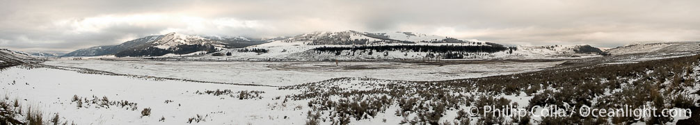 Lamar Valley in winter, panorama, a composite of seven individual images.,  Copyright Phillip Colla, image #22450, all rights reserved worldwide.