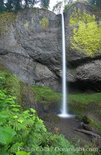 Latourelle Falls, in Guy W. Talbot State Park, drops 249 feet through a lush forest near the Columbia River, Columbia River Gorge National Scenic Area, Oregon