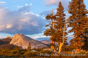 Lembert Dome and late afternoon clouds rise above Tuolumne Meadows in the High Sierra, catching the fading light of sunset.,  Copyright Phillip Colla, image #09938, all rights reserved worldwide.