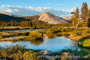 The Tuolumne River flows serenely through Tuolumne Meadows in the High Sierra. Lembert Dome is seen in the background.,  Copyright Phillip Colla, image #09940, all rights reserved worldwide.
