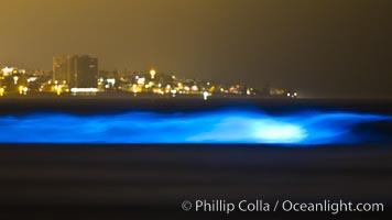 Lingulodinium polyedrum red tide dinoflagellate plankton, glows blue when it is agitated in wave and is visible at night, Lingulodinium polyedrum, La Jolla, California