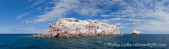 Los Islotes Island, Espiritu Santo-complex Biosphere Reserve, Sea of Cortez, Baja California, Mexico