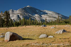 Mammoth Peak (12,117&#39;) rises above grassy meadows and granite boulders near Tioga Pass, Yosemite National Park, California